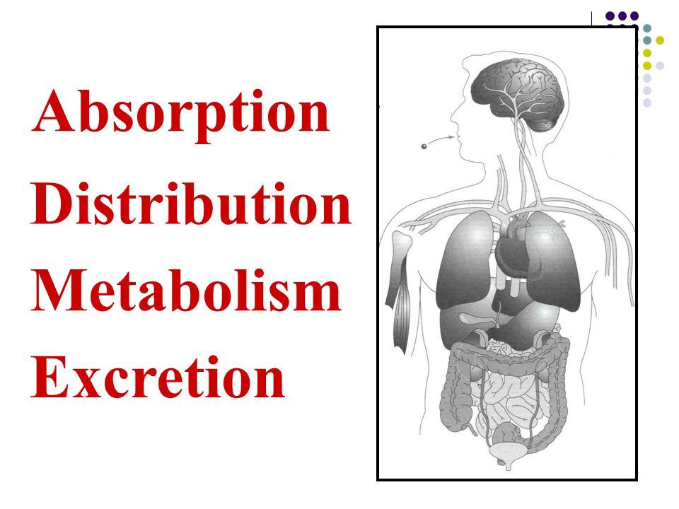 9 Distribution Metabolism Excretion Absorption