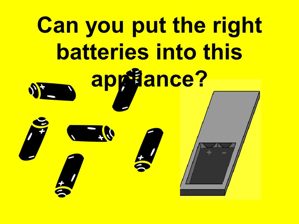 Can you put the right batteries into this appliance?