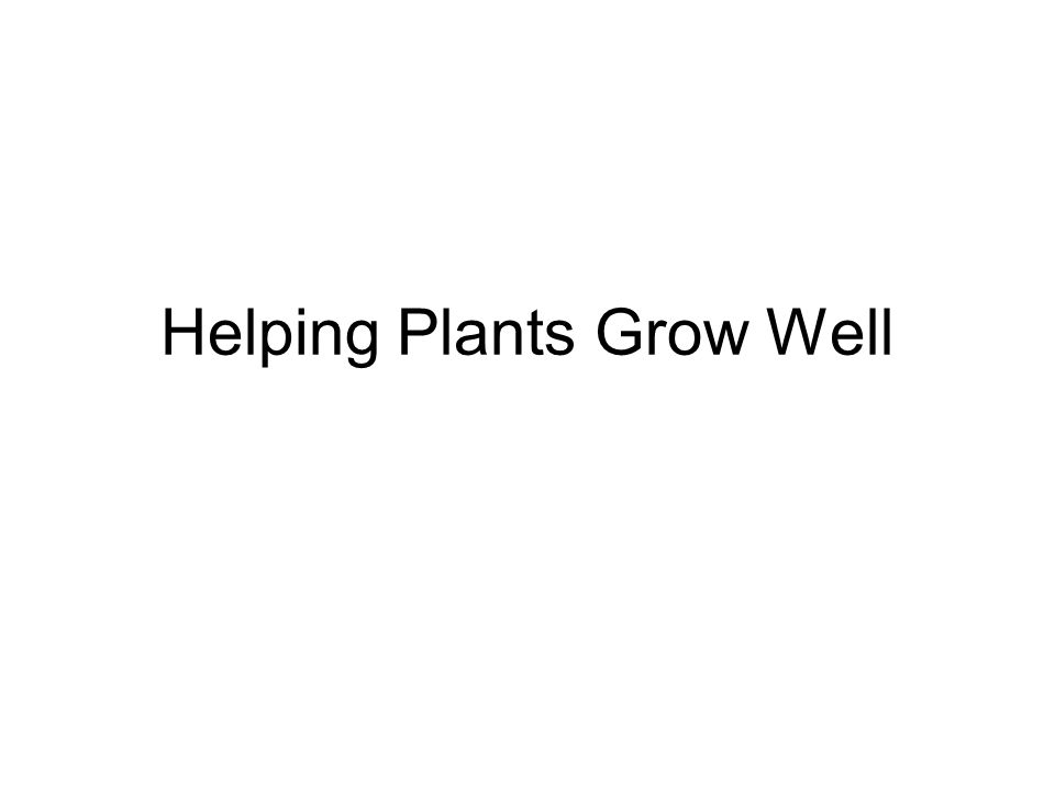 You are going to learn What plants need to be healthy.