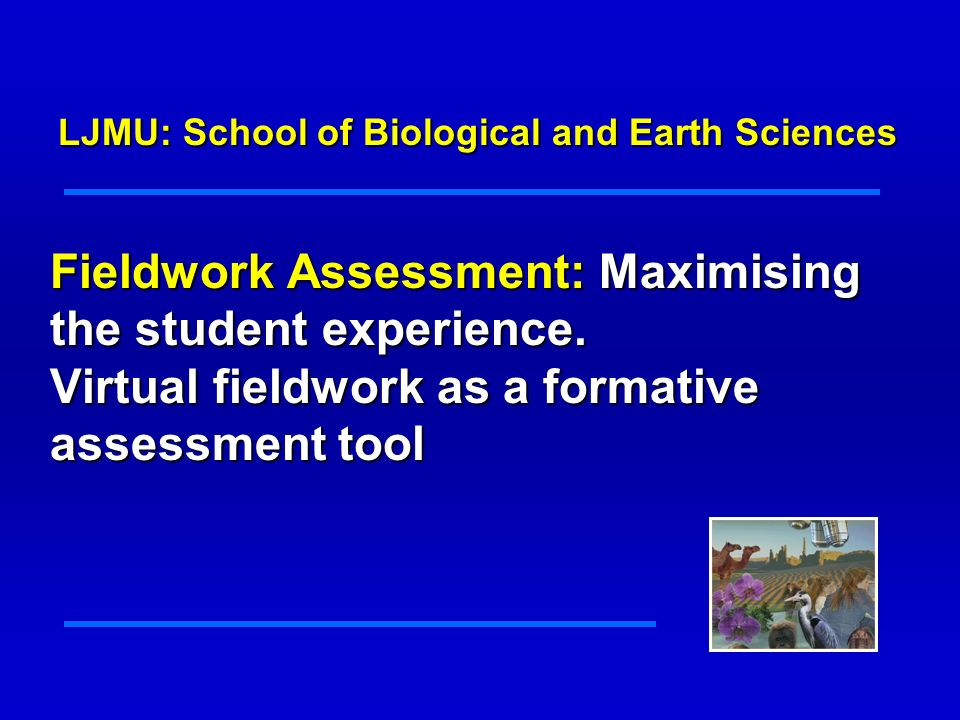 Fieldwork Assessment: Maximising the student experience.