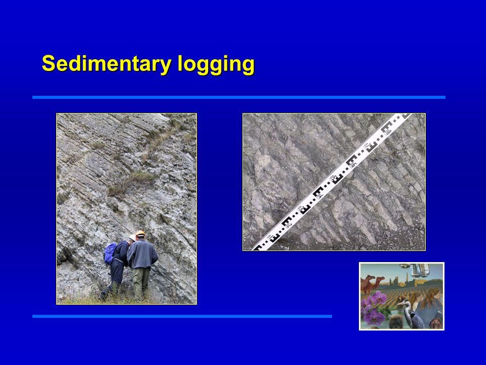 Sedimentary logging