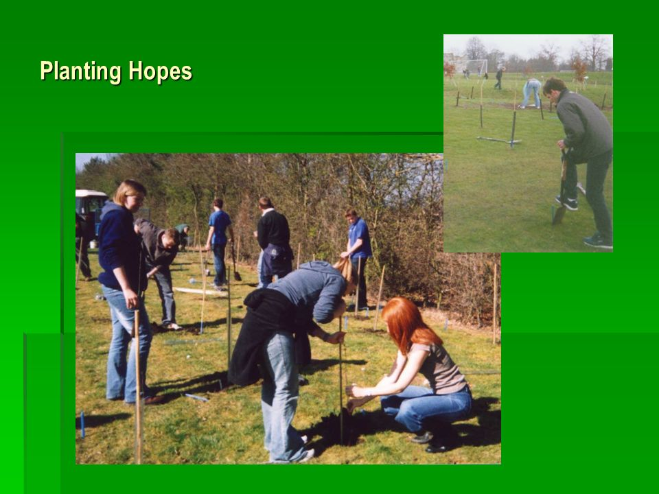 Planting Hopes