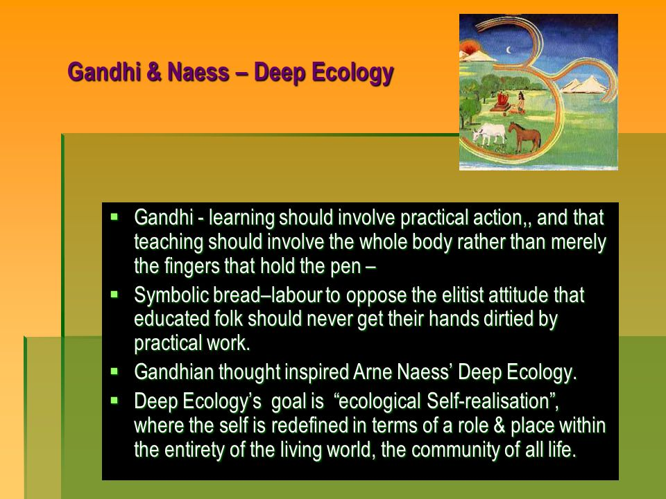 Gandhi & Naess – Deep Ecology Gandhi - learning should involve practical action,, and that teaching should involve the whole body rather than merely t