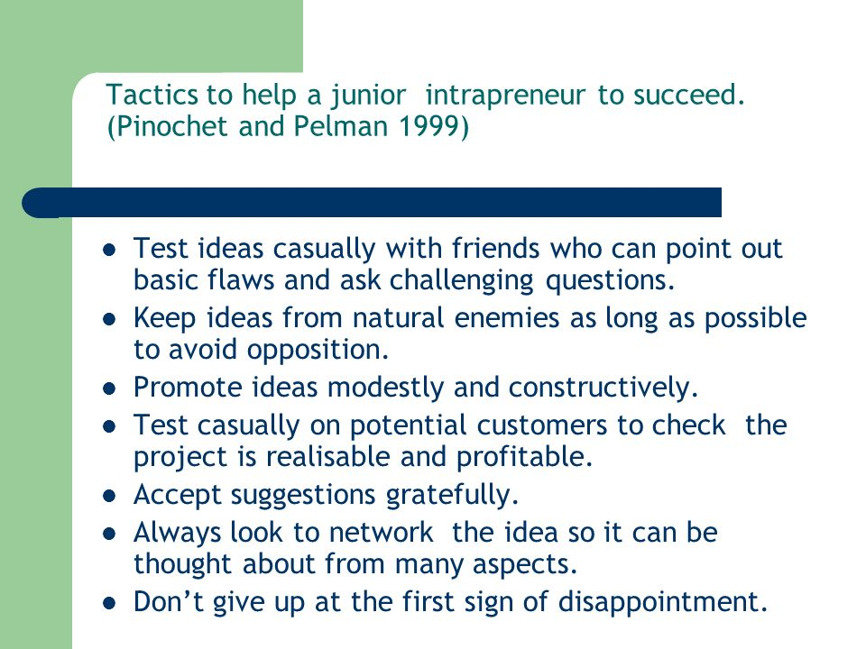 Tactics to help a junior intrapreneur to succeed.