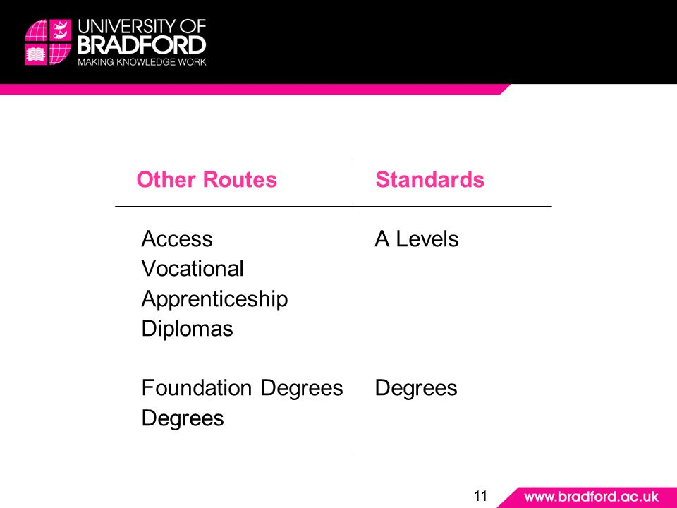Other Routes Standards Access A Levels Vocational Apprenticeship Diplomas Foundation DegreesDegrees Degrees 11