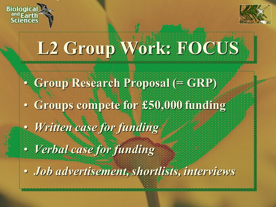 L2 Group Work: FOCUS Group Research Proposal (= GRP)Group Research Proposal (= GRP) Groups compete for £50,000 fundingGroups compete for £50,000 funding Written case for fundingWritten case for funding Verbal case for fundingVerbal case for funding Job advertisement, shortlists, interviewsJob advertisement, shortlists, interviews