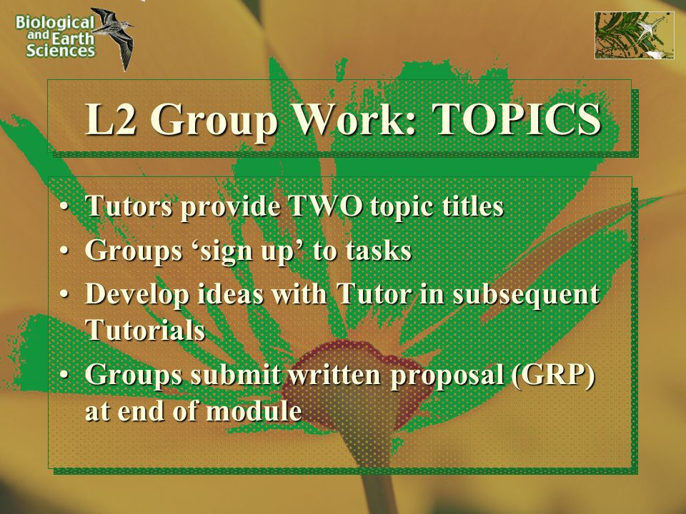 L2 Group Work: TOPICS Tutors provide TWO topic titlesTutors provide TWO topic titles Groups sign up to tasksGroups sign up to tasks Develop ideas with Tutor in subsequent TutorialsDevelop ideas with Tutor in subsequent Tutorials Groups submit written proposal (GRP) at end of moduleGroups submit written proposal (GRP) at end of module