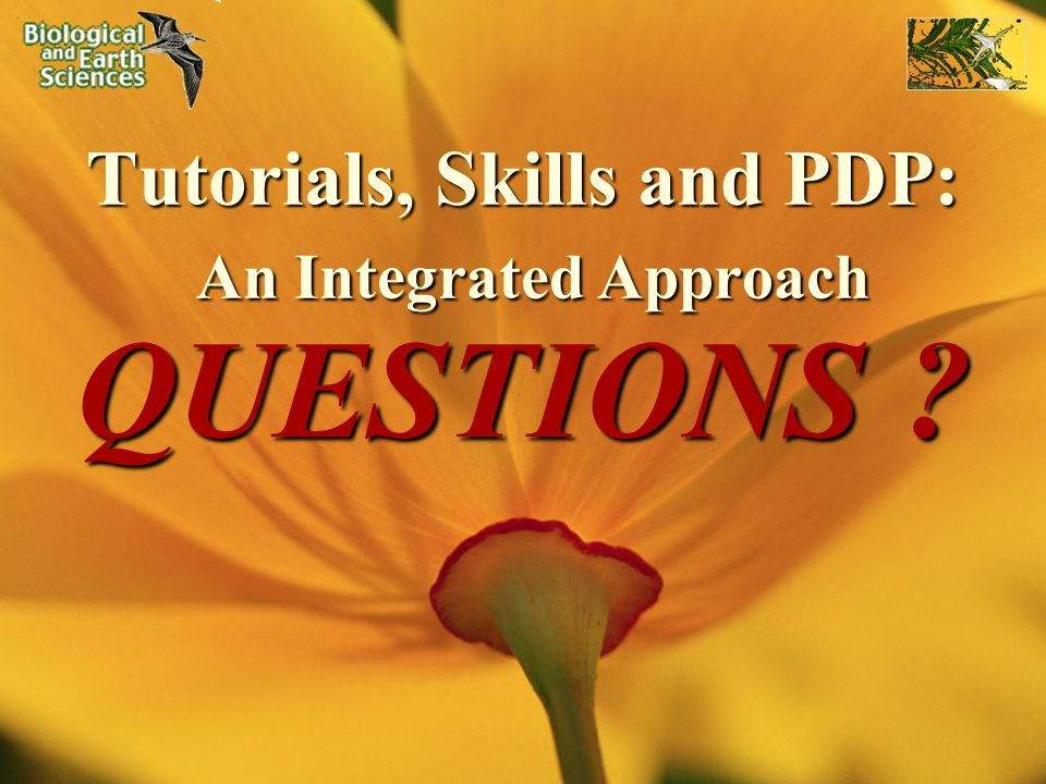 Tutorials, Skills and PDP: An Integrated Approach QUESTIONS ?