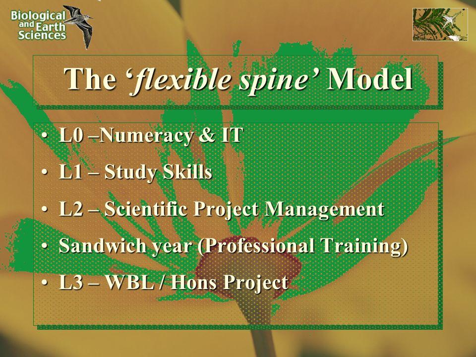 The flexible spine Model L0 –Numeracy & ITL0 –Numeracy & IT L1 – Study SkillsL1 – Study Skills L2 – Scientific Project ManagementL2 – Scientific Proje