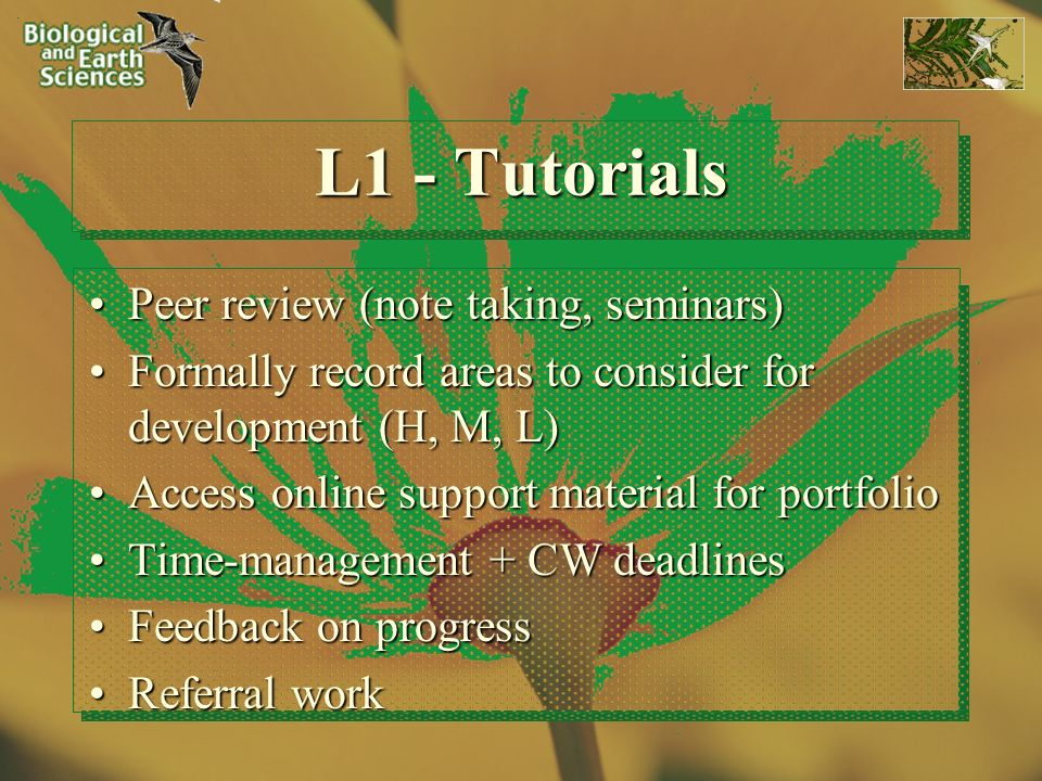 L1 - Tutorials Peer review (note taking, seminars)Peer review (note taking, seminars) Formally record areas to consider for development (H, M, L)Formally record areas to consider for development (H, M, L) Access online support material for portfolioAccess online support material for portfolio Time-management + CW deadlinesTime-management + CW deadlines Feedback on progressFeedback on progress Referral workReferral work