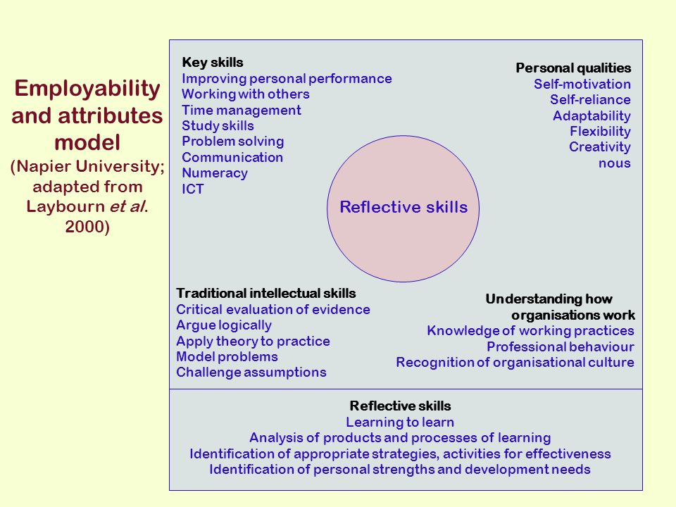 Employability and attributes model (Napier University; adapted from Laybourn et al.