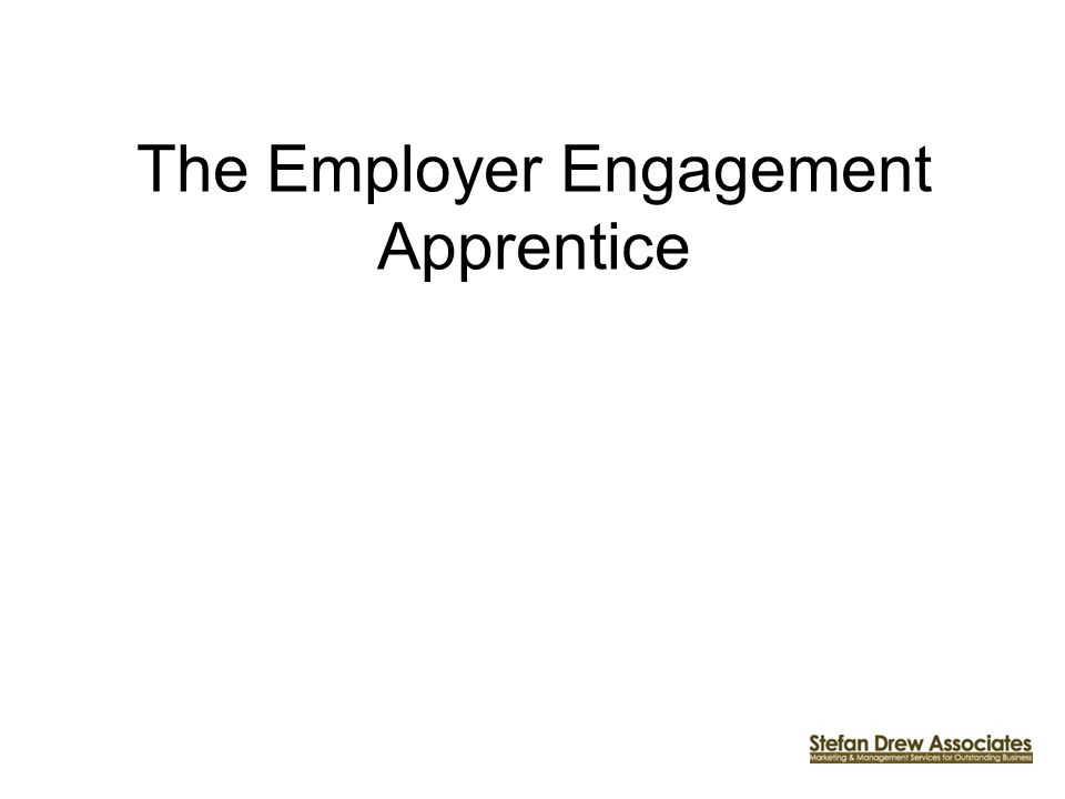The Employer Engagement Apprentice