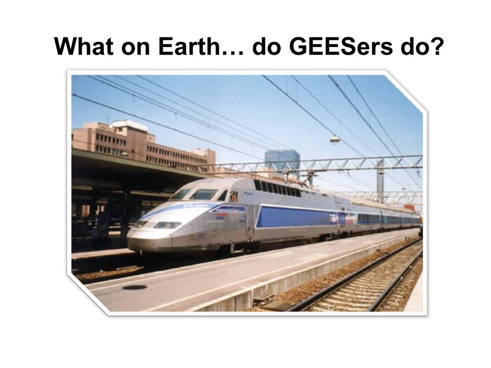 What on Earth… do GEESers do?