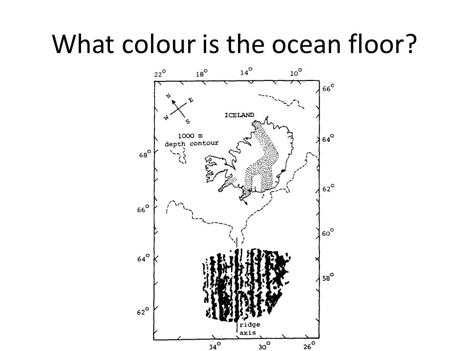 What colour is the ocean floor?