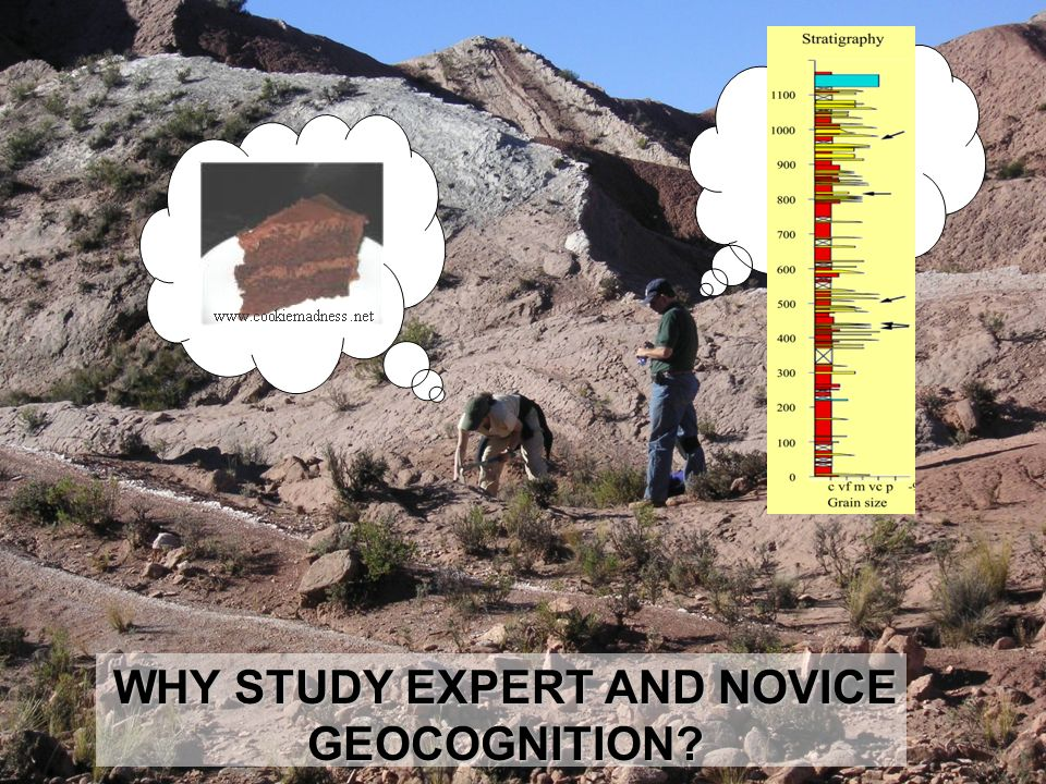WHY STUDY EXPERT AND NOVICE GEOCOGNITION