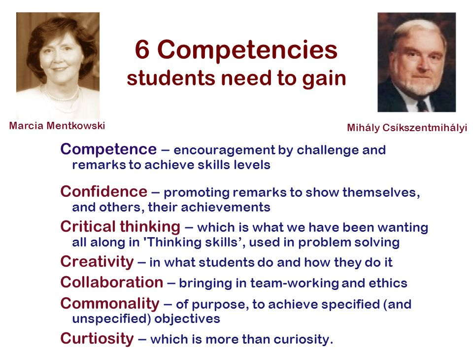 6 Competencies students need to gain Competence – encouragement by challenge and remarks to achieve skills levels Confidence – promoting remarks to sh