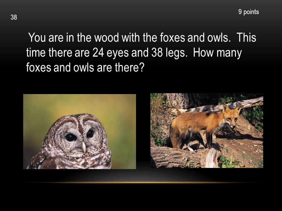 You are in the wood with the foxes and owls. This time there are 24 eyes and 38 legs. How many foxes and owls are there? 9 points 38