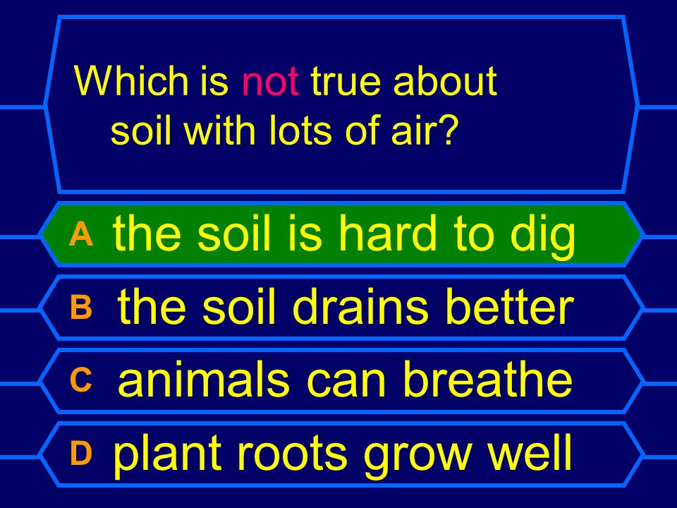 Which is not true about soil with lots of air? A the soil is hard to dig B the soil drains better C animals can breathe D plant roots grow well