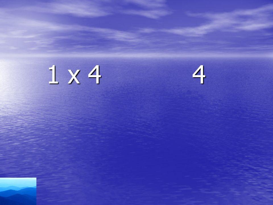 1 x 4 4