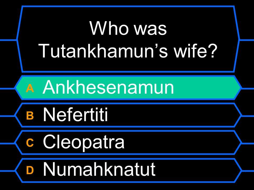 Who was Tutankhamuns wife? A Ankhesenamun B Nefertiti C Cleopatra D Numahknatut