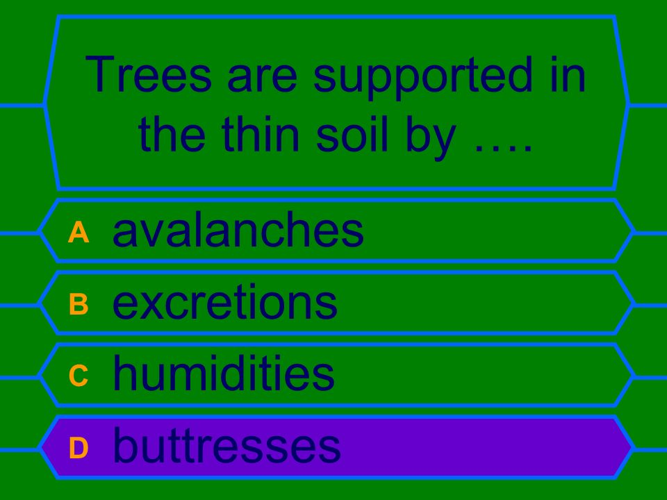 Trees are supported in the thin soil by …. A avalanches B excretions C humidities D buttresses