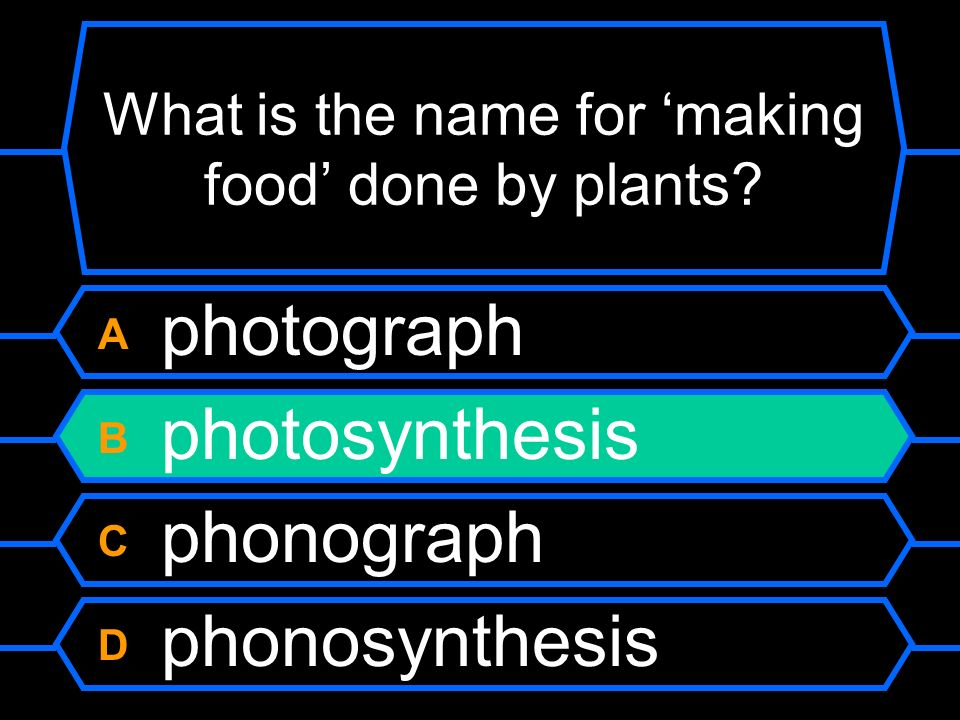 What is the name for making food done by plants.