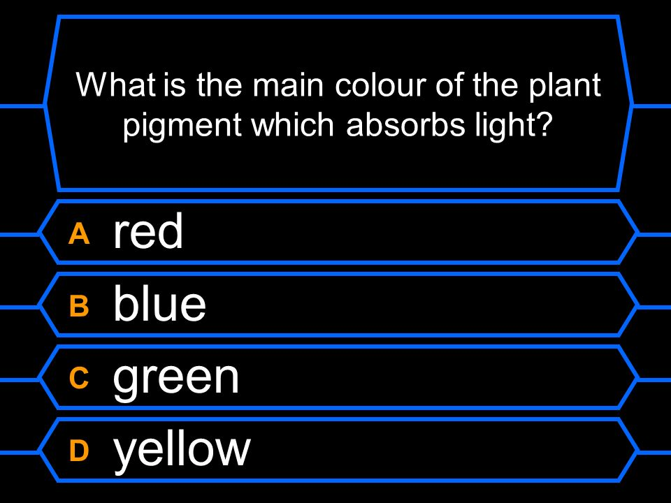 What is the main colour of the plant pigment which absorbs light? A red B blue C green D yellow