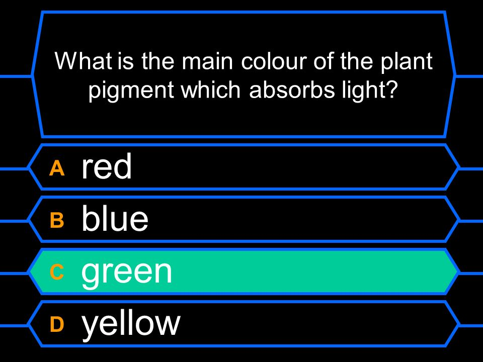 What is the main colour of the plant pigment which absorbs light A red B blue C green D yellow