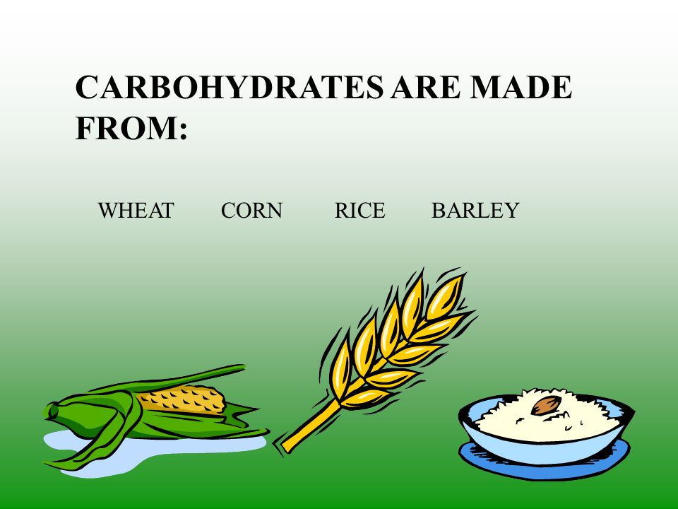 CARBOHYDRATES ARE MADE FROM: WHEAT CORN RICE BARLEY