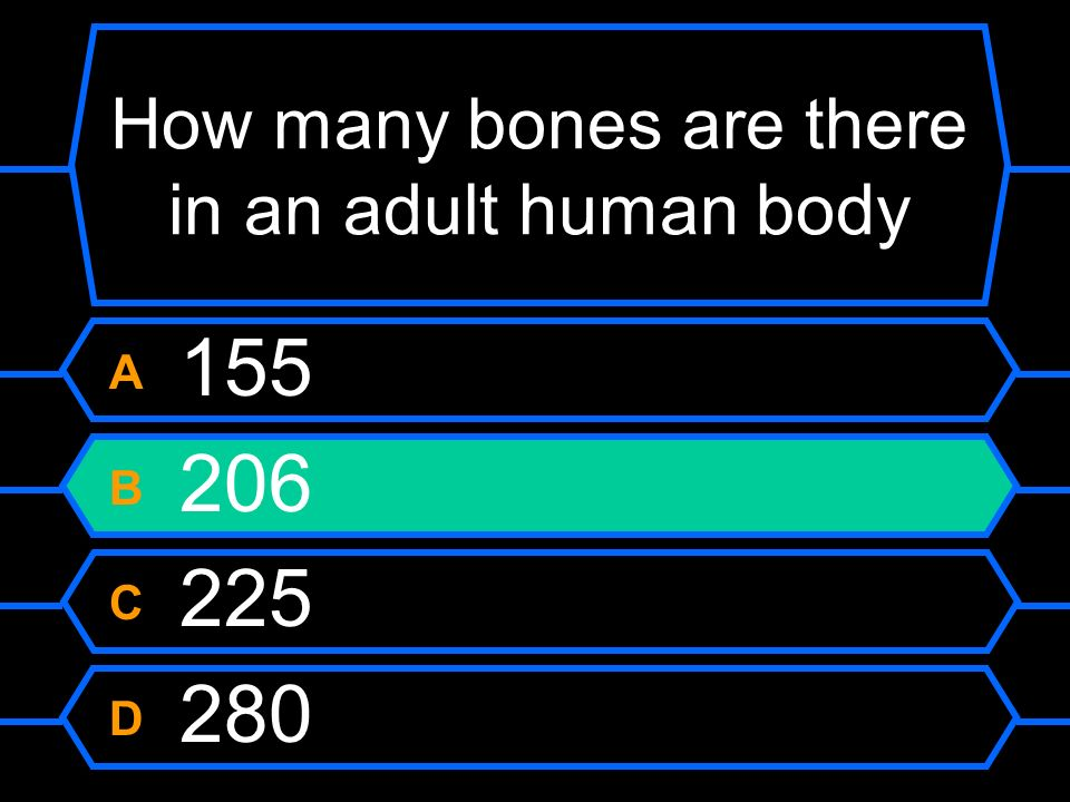 How many bones are there in an adult human body A 155 B 206 C 225 D 280