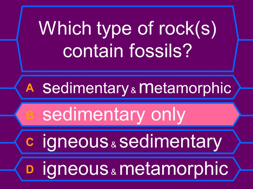 Which type of rock(s) contain fossils? A s edimentary & m etamorphic B sedimentary only C igneous & sedimentary D igneous & metamorphic