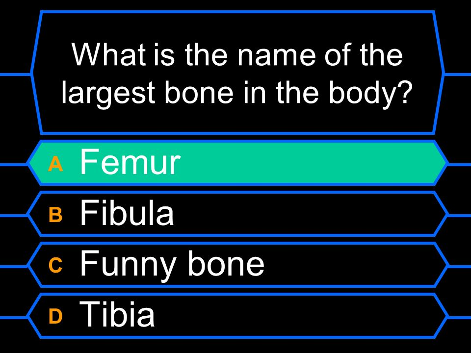 What is the name of the largest bone in the body A Femur B Fibula C Funny bone D Tibia