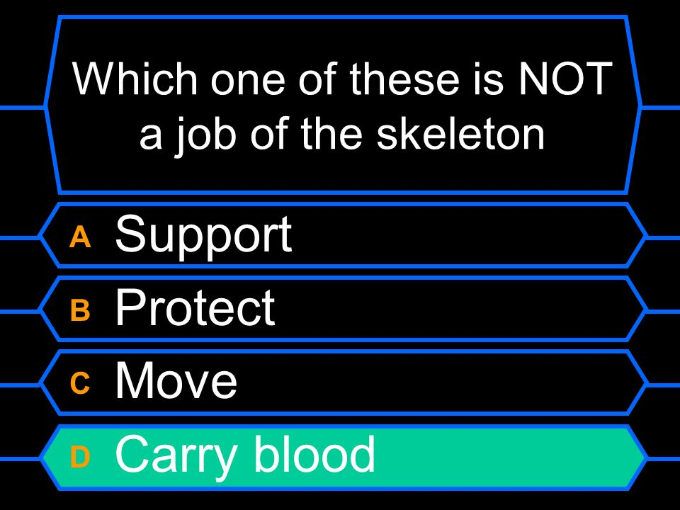 Which one of these is NOT a job of the skeleton A Support B Protect C Move D Carry blood