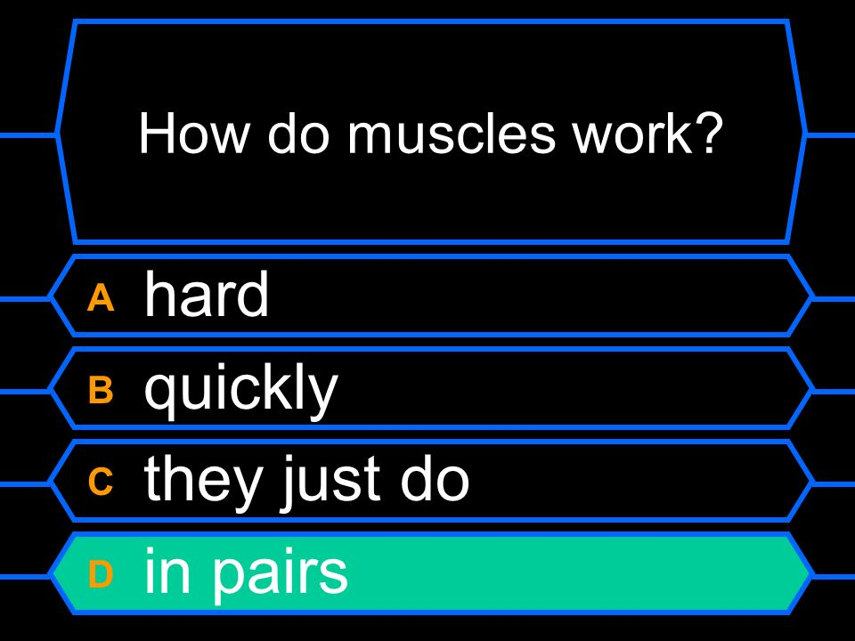 How do muscles work A hard B quickly C they just do D in pairs
