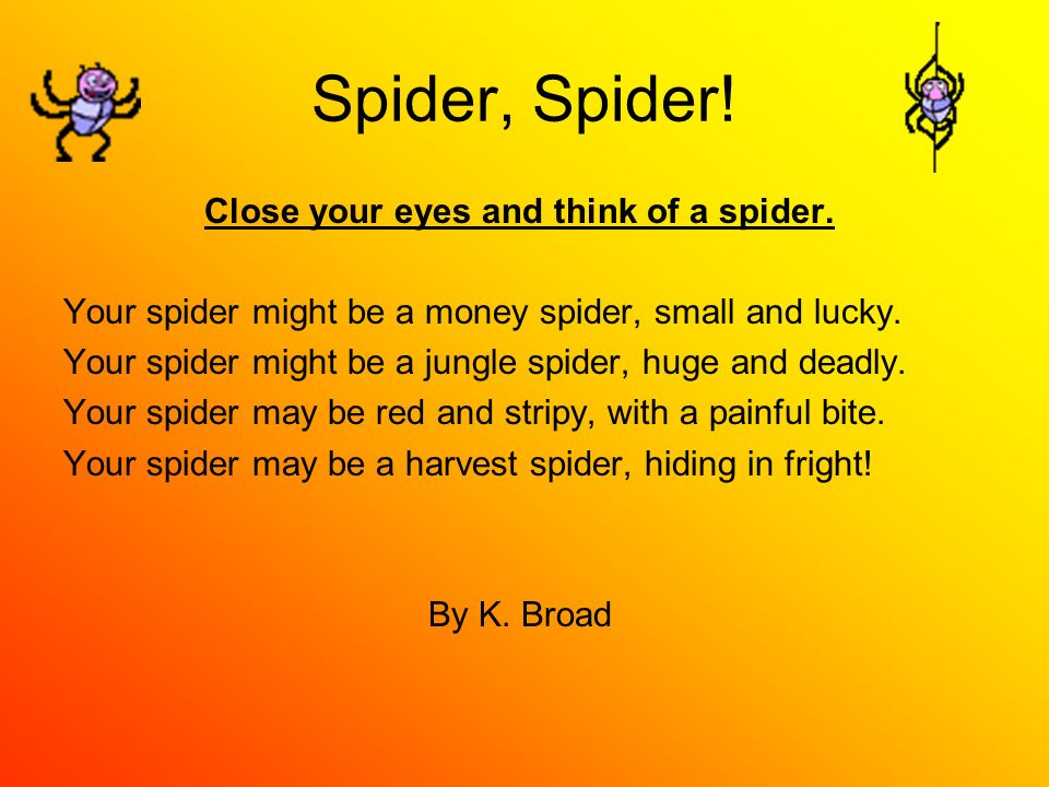 Spider, Spider! Close your eyes and think of a spider. Your spider might be a money spider, small and lucky. Your spider might be a jungle spider, hug