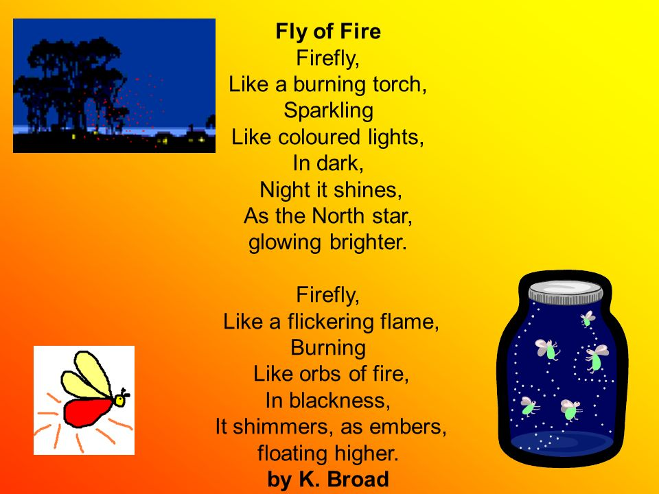 Fly of Fire Firefly, Like a burning torch, Sparkling Like coloured lights, In dark, Night it shines, As the North star, glowing brighter. Firefly, Lik
