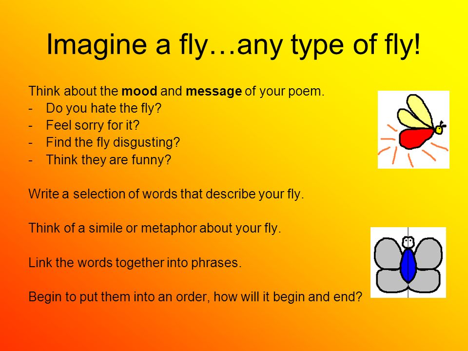 Imagine a fly…any type of fly! Think about the mood and message of your poem. -Do you hate the fly? -Feel sorry for it? -Find the fly disgusting? -Thi