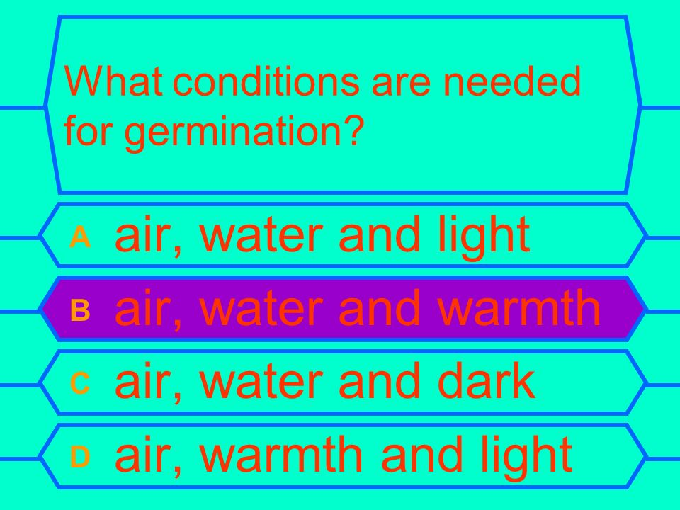 What conditions are needed for germination? A air, water and light B air, water and warmth C air, water and dark D air, warmth and light
