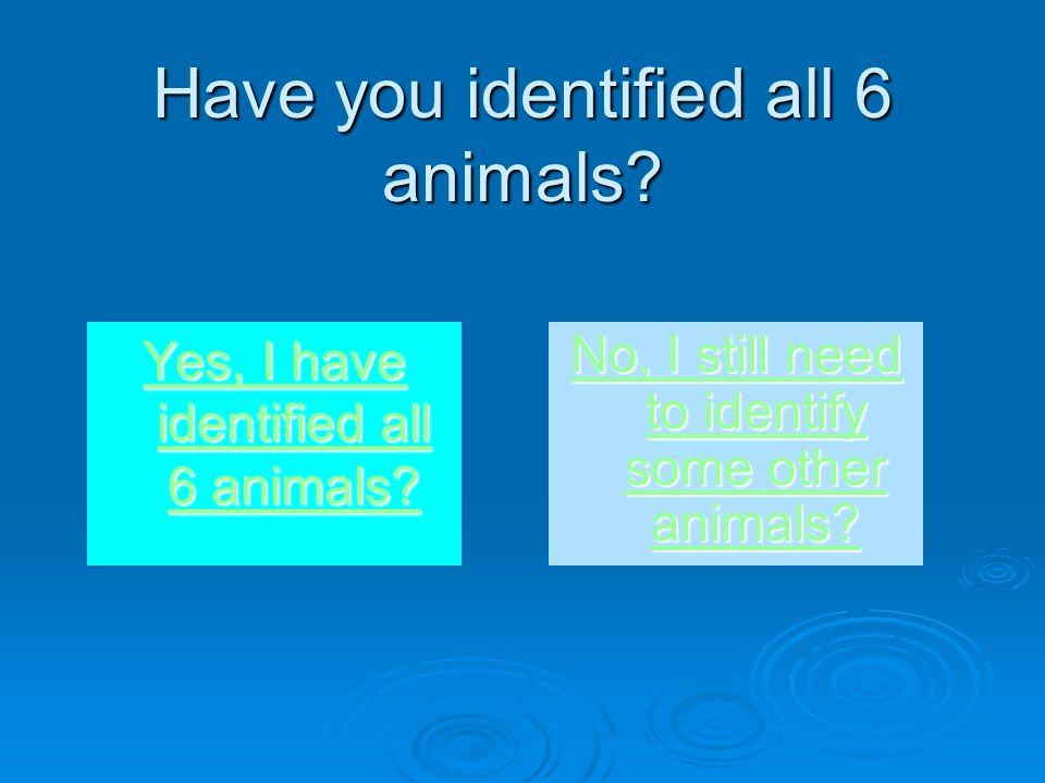 Have you identified all 6 animals. Yes, I have identified all 6 animals.