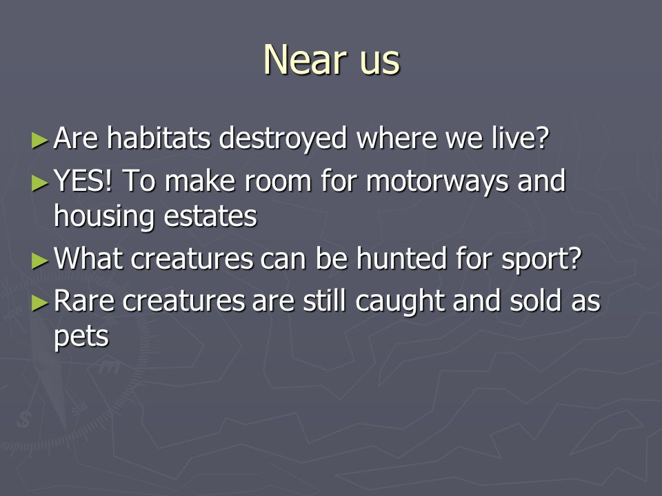 Near us Are habitats destroyed where we live? Are habitats destroyed where we live? YES! To make room for motorways and housing estates YES! To make r