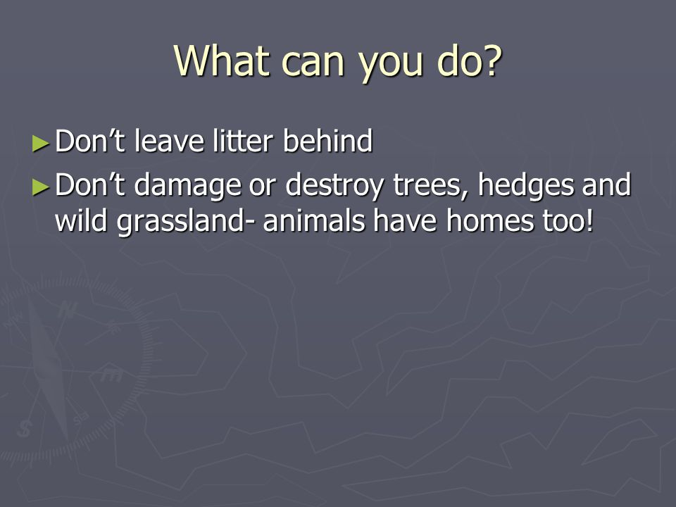 What can you do? Dont leave litter behind Dont leave litter behind Dont damage or destroy trees, hedges and wild grassland- animals have homes too! Do