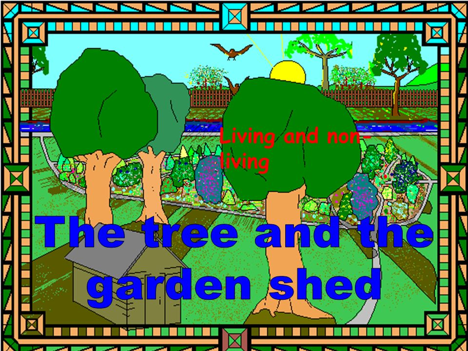 Well, you cannot, said the shed to the tree.