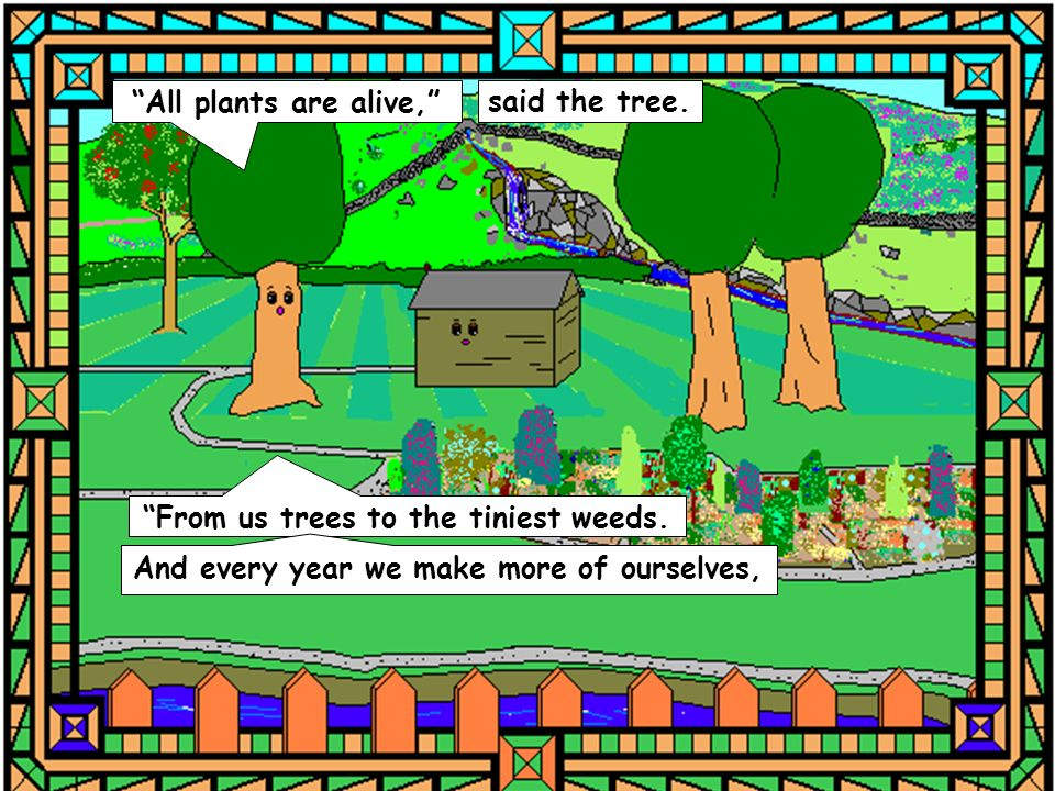 All plants are alive, said the tree. From us trees to the tiniest weeds. And every year we make more of ourselves,