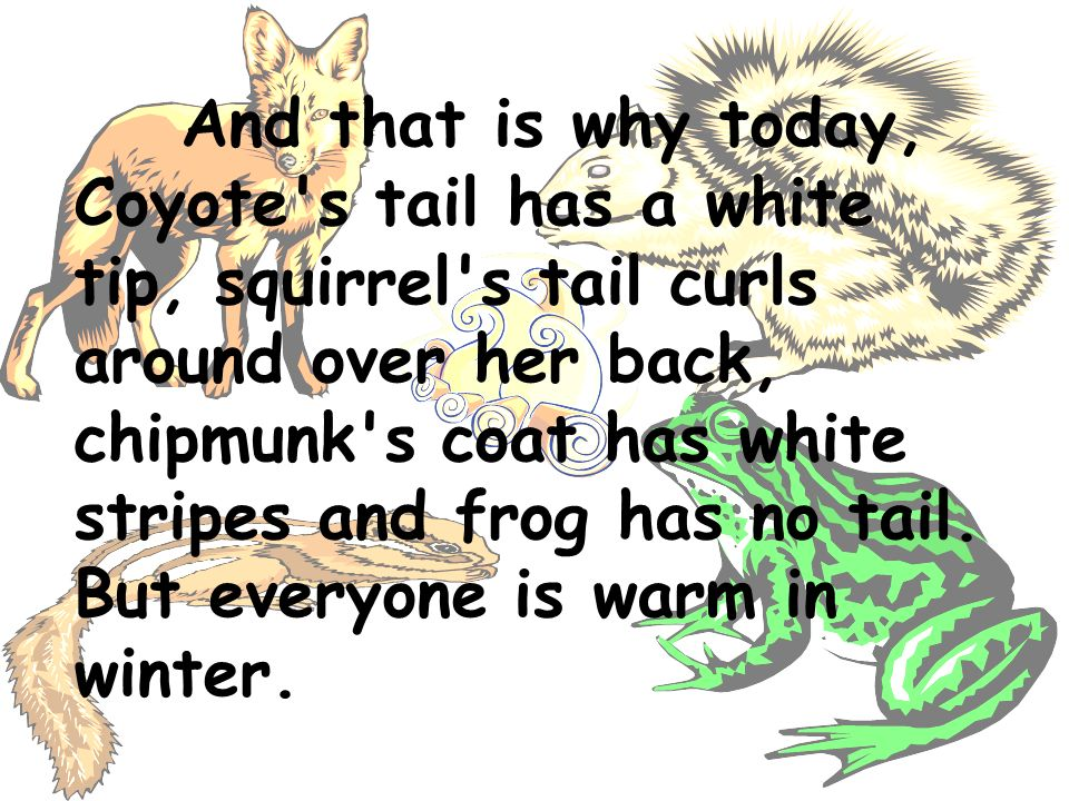 And that is why today, Coyote's tail has a white tip, squirrel's tail curls around over her back, chipmunk's coat has white stripes and frog has no ta