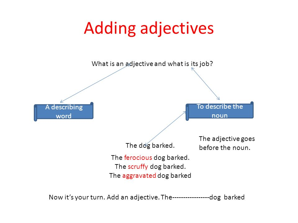 Adding adjectives What is an adjective and what is its job? A describing word To describe the noun The dog barked. The ferocious dog barked. The scruf