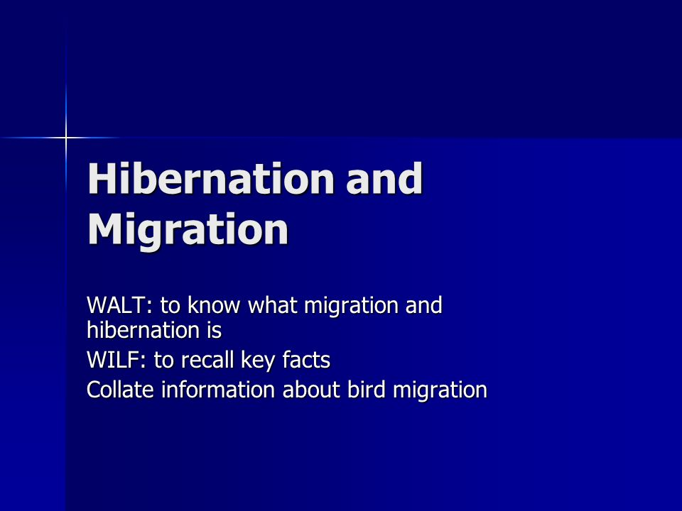 Hibernation and Migration WALT: to know what migration and hibernation is WILF: to recall key facts Collate information about bird migration