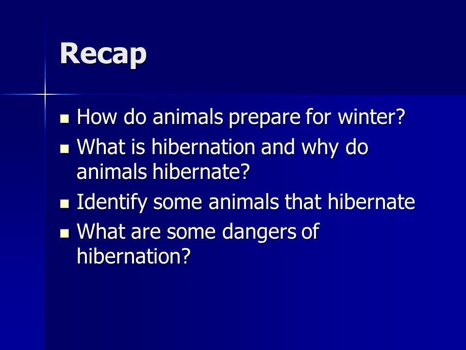 Recap How do animals prepare for winter? How do animals prepare for winter? What is hibernation and why do animals hibernate? What is hibernation and
