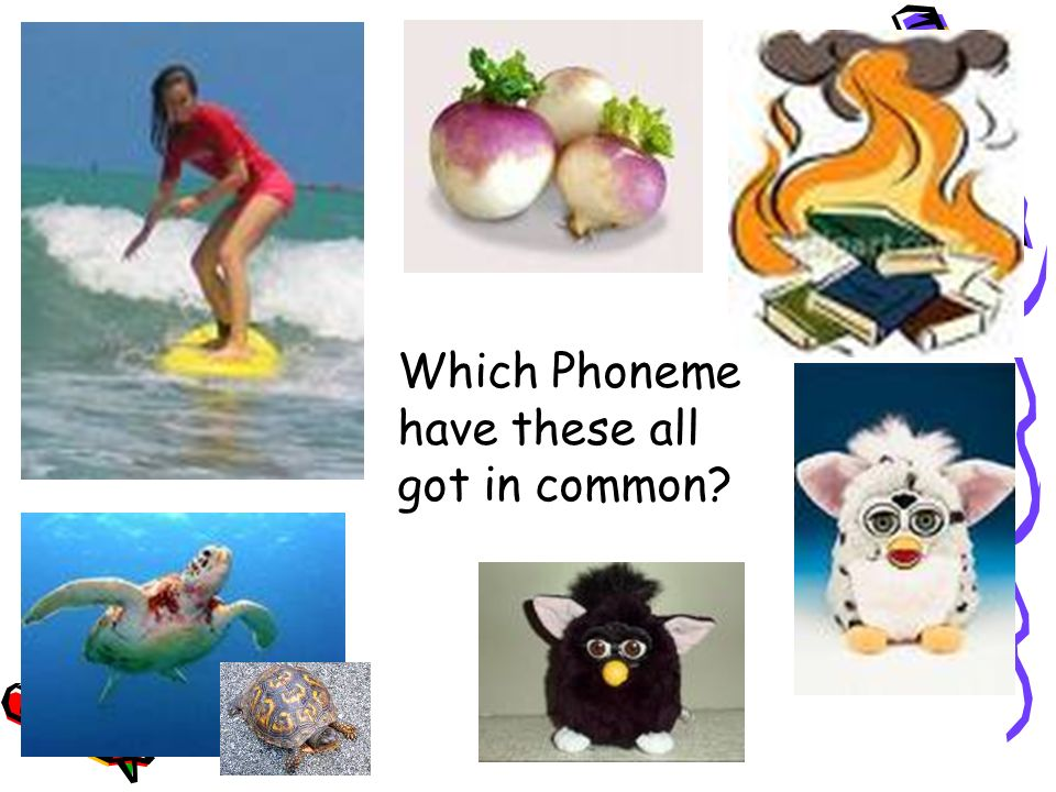Which Phoneme have these all got in common