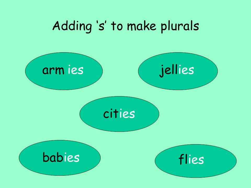 Adding s to make plurals arm babies cities flies jelliesies