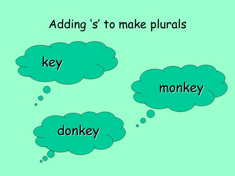 Adding s to make plurals key monkey donkey